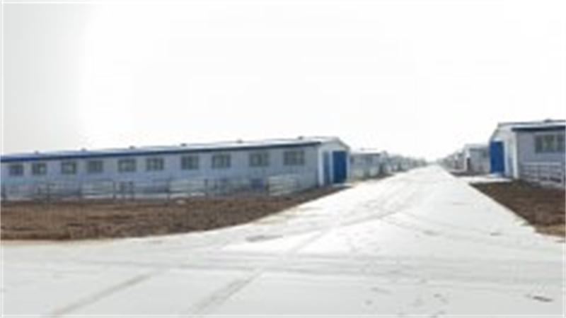 喀什市2019良繁体系建设项目