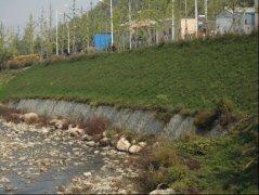 茵香河生态综合治理一期景观提升nba视频直播纬来体育